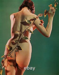 Susumu Matsushima Vintage Nude 1960s Asian Japanese 17 x 22 Fine Art Print