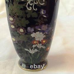 Fine Antique Japonais Cloisonne, Fleurs, Iris
